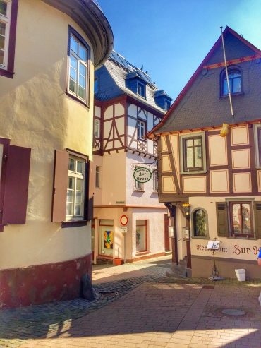 Enchanting timbered houses